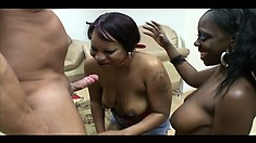 Two cheap black hookers showing the world what good BJs are all about