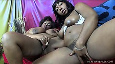 These black BBW dykes need sex right now and they will give it to each other
