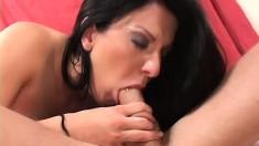 Sexy big ass brunette enjoys tender anal sex with her well-endowed partner