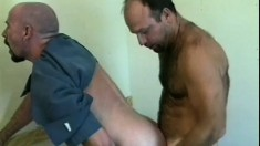 Two lusty gay cops decide to practice strip searching each other