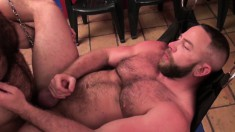 Brad and Shay are two hunky bears with a passion for hardcore anal sex