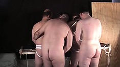 Big Gay Bear Wearing A Jockstrap Gets Pounded By Three Lusty Cocksuckers