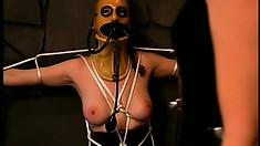 Brunette dominatrix tortures her lesbian, mask-wearing, slave
