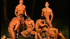 A pack of six eager amateurs fuck each other like crazy in a field