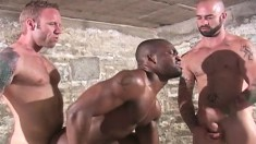 Muscled Hunks Sam Swift, Troy Punk And Derek Reynolds Engage In All-male Oral And Anal Sex